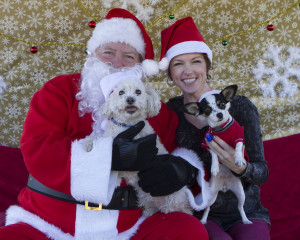 Dogs with Santa Claus 2015
